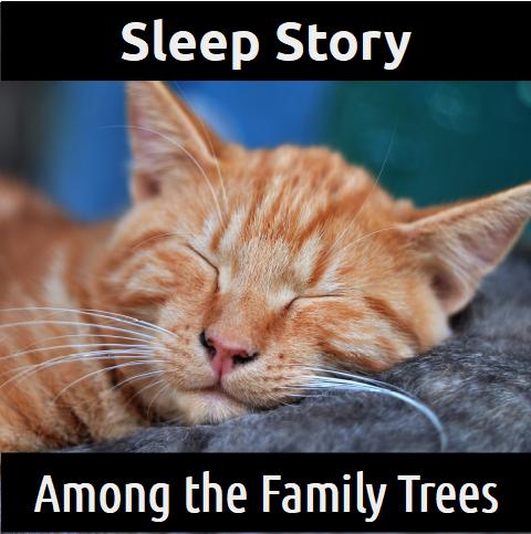 SLEEP STORY:  Among the Family Trees