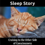 SLEEP STORY:  Cruising to the Other Side of Consciousness