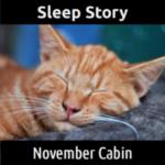 SLEEP STORY:  November Cabin
