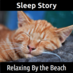 SLEEP STORY:  Relaxing By the Beach