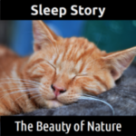 SLEEP STORY:  The Beauty of Nature